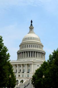 ワシントンD.C.の国会議事堂の建物の写真素材 [FYI01693527]