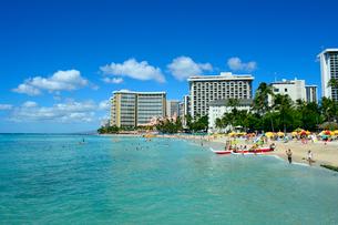 ワイキキビーチの海とアウトリガーカヌーの写真素材 [FYI01693536]