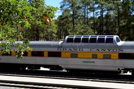 グランドキャニオン国立公園のグランドキャニオン鉄道の車両の写真素材 [FYI01693571]