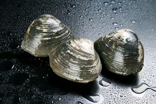 ホッキ貝と水滴の写真素材 [FYI01693717]