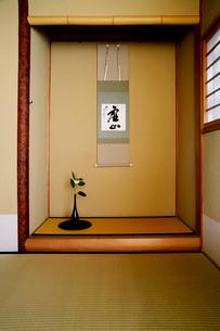 茶室の床の間の一輪挿しと掛け軸の写真素材 [FYI01693741]