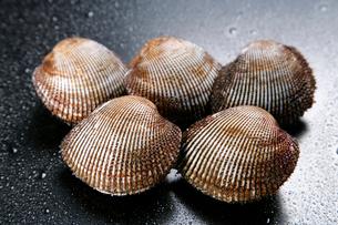 赤貝と水滴の写真素材 [FYI01693753]