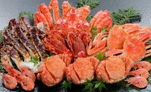 蟹と伊勢エビの写真素材 [FYI01693759]