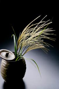陶器とススキの写真素材 [FYI01693830]