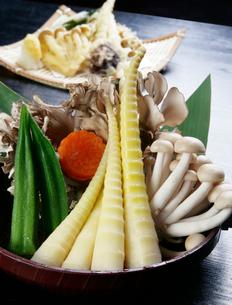 山菜天ぷらの材料の写真素材 [FYI01693961]