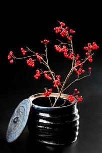 陶器とカマツカの赤い実の写真素材 [FYI01693979]