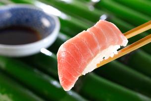 中トロの握り寿司の写真素材 [FYI01694156]