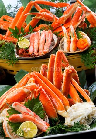 ズワイ蟹の足の写真素材 [FYI01694161]