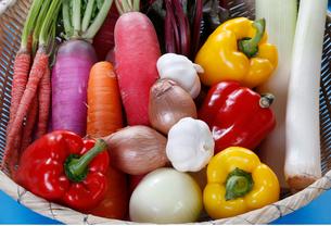 野菜の盛り合せの写真素材 [FYI01694163]