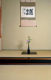 茶室の床の間の写真素材 [FYI01694164]