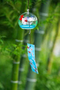 風鈴と竹の写真素材 [FYI01694209]