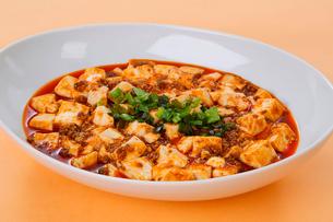 麻婆豆腐の写真素材 [FYI01694265]