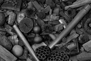 木炭の写真素材 [FYI01694281]