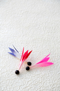 羽子板の羽根の写真素材 [FYI01694362]