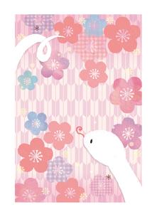 巳年 和柄梅の花と白へびのイラスト素材 [FYI01694425]