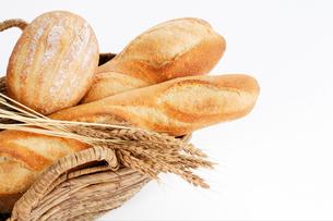 フランスパンの写真素材 [FYI01694461]
