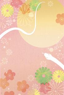 梅と菊と月と白蛇(ピンク背景)のイラスト素材 [FYI01694674]