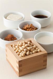大豆と大豆製品の写真素材 [FYI01695613]