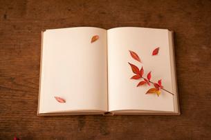 本と南天の葉の写真素材 [FYI01695719]