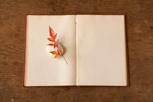 本と南天の葉の写真素材 [FYI01695973]