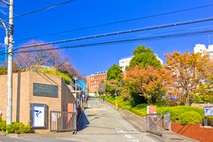 帝京大学八王子キャンパスの写真素材 [FYI01696310]