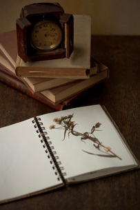 押し花と古い時計の写真素材 [FYI01696491]