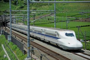 茶畑と東海道新幹線の写真素材 [FYI01698374]