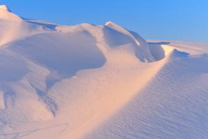 朝日に照らされた雪原の風紋の写真素材 [FYI01699323]