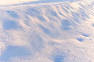 雪原の写真素材 [FYI01699373]