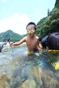 たも網で魚をすくう子どもの写真素材 [FYI01699694]