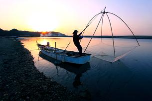 シロウオ漁の写真素材 [FYI01699705]