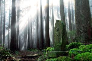霧に包まれた熊野古道の写真素材 [FYI01699770]