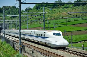 東海道新幹線 N700系の写真素材 [FYI01699805]