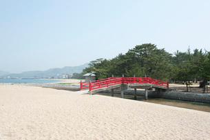 津田の松原の写真素材 [FYI01699859]