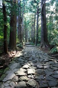 大門坂 熊野古道 の写真素材 [FYI01699983]