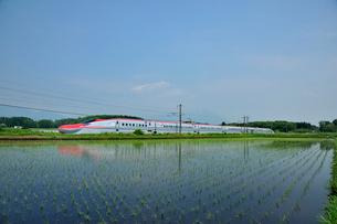 秋田新幹線こまちの写真素材 [FYI01700077]