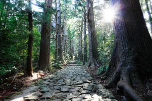 大門坂 熊野古道 の写真素材 [FYI01700097]
