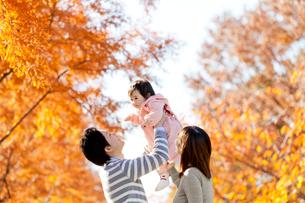 紅葉の公園で遊ぶ3人家族の写真素材 [FYI01700137]