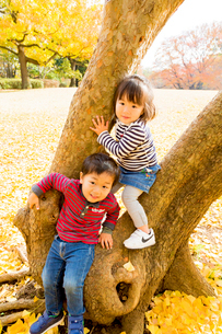 秋の公園で遊ぶ男の子と女の子の写真素材 [FYI01700178]
