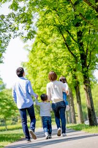 新緑の公園を歩く4人家族の後ろ姿の写真素材 [FYI01700196]