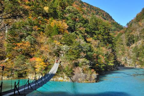 寸又峡夢の吊り橋の写真素材 [FYI01700285]