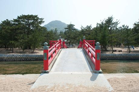 津田の松原の写真素材 [FYI01700293]