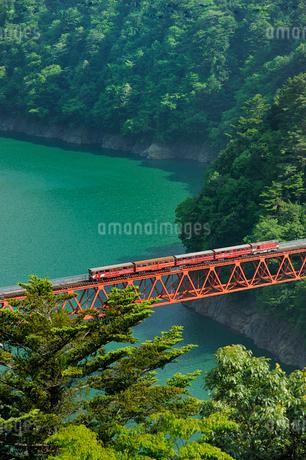 大井川鉄道井川線レインボーブリッジの写真素材 [FYI01700389]