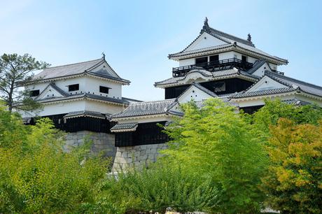 松山城の写真素材 [FYI01700568]