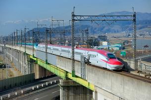 東北新幹線はやてと秋田新幹線スーパーこまちの写真素材 [FYI01700676]