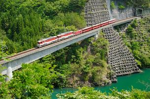 大井川鉄道井川線アプト式区間の写真素材 [FYI01700811]