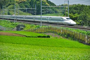 東海道新幹線 N700系の写真素材 [FYI01700906]