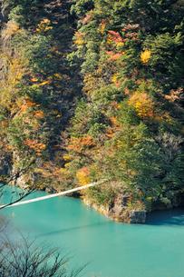 寸又峡夢の吊り橋の写真素材 [FYI01701306]