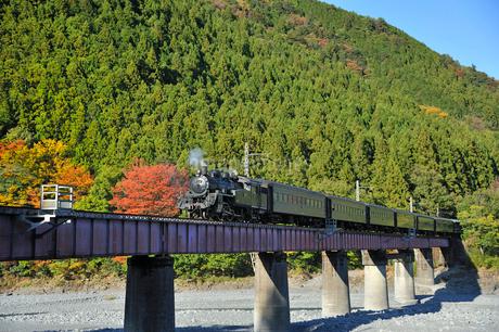 大井川鉄道SLの写真素材 [FYI01701533]