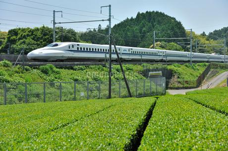東海道新幹線 N700系の写真素材 [FYI01701564]